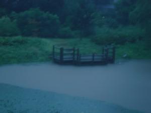 明け方の豪雨で飛鳥沼水位上昇