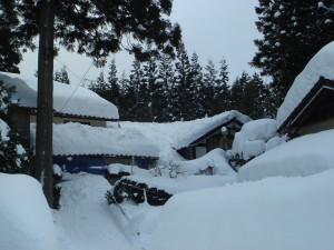 平田地域の中山間地帯では異常豪雪で家が見えなくなっています