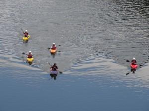 透き通る四万十の水面を優雅に下るカヌーイストたち